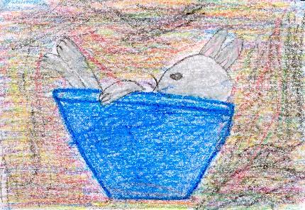 White Rabbit\'s Color Book * Written by Alan Baker